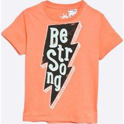 T-shirty męskie z nadrukiem: zippy - T-shirt dziecięcy 95-138 cm