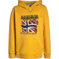 Napapijri BENDER  Bluza z kapturem yellow. Szare bluzy chłopięce rozpinane marki Napapijri, l, z materiału, z kapturem. Za 209,00 zł.