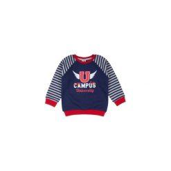 Bluza sportowa z printem, w paski nierozpinana. Szare bluzy niemowlęce marki TXM, w paski. Za 19,99 zł.