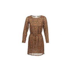Sukienki: Sukienki krótkie Petite Mendigote  JOSEPHINE