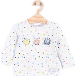 Koszulka. Szare bluzki dziewczęce bawełniane FAMILY FOREST, z aplikacjami, z długim rękawem. Za 29,90 zł.