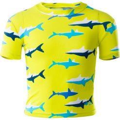 Kąpielówki chłopięce: AQUAWAVE Dziecięce kąpielówki SHARK KIDS SWIM SHIRT, kolor SULPHUR SPRING/SHARK PRINT, rozmiar 110
