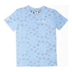 T-shirty chłopięce: Koszulka w kolorze błękitno-szarym