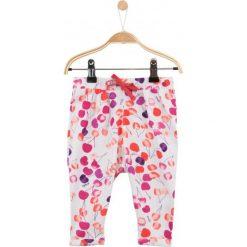 Spodnie niemowlęce: Spodnie w owocowy deseń dla niemowlaka