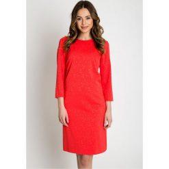 Sukienki: Trapezowa sukienka z podszewką BIALCON