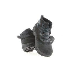 Buty zimowe męskie: Śniegowce DC Shoes  DC Rebound WNT ADBS100076 GP2