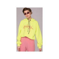 Bluzy rozpinane damskie: Neon Yellow Animal Hoodie Bluza