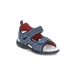 Sandały Dziecko  Citrouille et Compagnie  GRAFOTA. Niebieskie sandały chłopięce Citrouille et Compagnie. Za 143,20 zł.