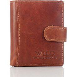 Portfele męskie: Skórzany męski portfel WILD w pudełku Brązowy
