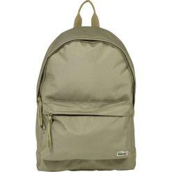 Lacoste BACKPACK Plecak olive. Zielone plecaki męskie Lacoste. Za 369,00 zł.