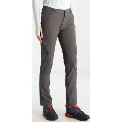 Bryczesy damskie: Black Diamond ALPINE LIGHT PANTS Spodnie materiałowe slate