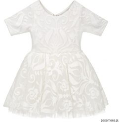 Odzież dziecięca: Teen Sukieneczka Tiulowa z Koronką Ivory Sky