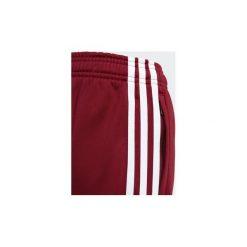 Spodnie treningowe Dziecko adidas  Spodnie SST. Czerwone spodnie chłopięce Adidas. Za 169,00 zł.