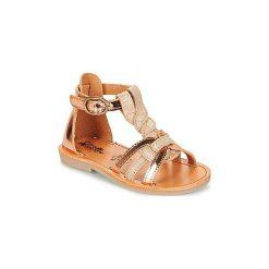 Sandały Dziecko  Citrouille et Compagnie  GITANOLO. Brązowe sandały dziewczęce marki Citrouille et Compagnie. Za 169,00 zł.