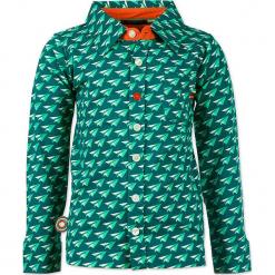 """Koszula """"Big Jet Plane"""" w kolorze zielonym. Zielone koszule chłopięce marki 4FunkyFlavours Kids, z klasycznym kołnierzykiem. W wyprzedaży za 102,95 zł."""