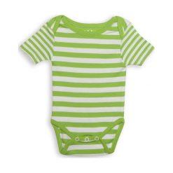 Body Greenery Stripe 0-3m. Czarne body niemowlęce marki Calvin Klein Black Label. Za 28,27 zł.