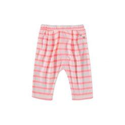 Odzież dziecięca: ESPRIT Girls Spodnie Fashion white