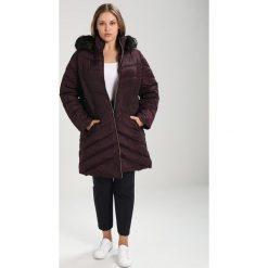 Płaszcze damskie pastelowe: Dorothy Perkins Curve Płaszcz zimowy burgundy