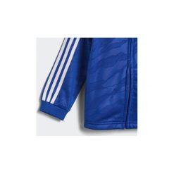 Spodnie dresowe dziewczęce: Zestawy dresowe adidas  Dres z kapturem Shiny