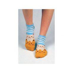 Skarpetki damskie: Skarpetki z kotami (w paseczki niebieskie)