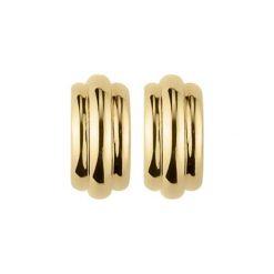 Kolczyki damskie: Kolczyki w kolorze złotym