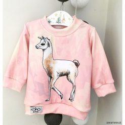 Bluzy dziewczęce rozpinane: Bluza dziecięca LAMA PINK