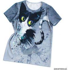 Bluzki dziewczęce bawełniane: Diego - bluzka dziewczęca z kotem
