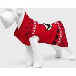 Medicine - Sweter dla psa Xmass. Szare swetry klasyczne damskie MEDICINE, l, z bawełny. Za 59,90 zł.