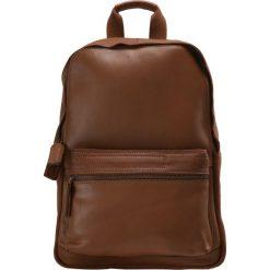 Plecaki męskie: Pier One Plecak brown