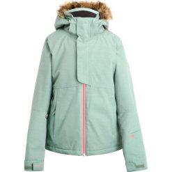 Odzież damska: Brunotti FAIRLEAD  Kurtka snowboardowa leafy green