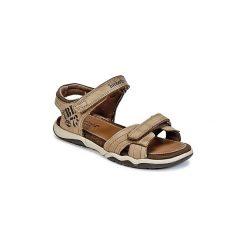 Sandały sportowe Dziecko  Timberland  OAK BLUFFS LEATHER 2STRAP. Brązowe buty sportowe chłopięce marki Timberland. Za 202,30 zł.