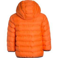 Next PADDED JACKET  Kurtka zimowa orange. Brązowe kurtki chłopięce zimowe marki Next, z materiału. W wyprzedaży za 127,20 zł.