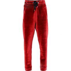 Bryczesy damskie: Ivy Park Spodnie treningowe chilli red