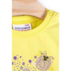 Bluzki dziewczęce bawełniane: Coccodrillo - Bluzka dziecięca 62-86 cm