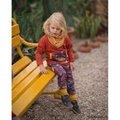 Komplet dla dziecka Liski, niemowle. Brązowe spodnie niemowlęce Pakamera, z bawełny. Za 111,00 zł.
