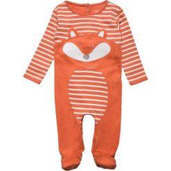 Bielizna chłopięca: JoJo Maman Bébé FOX SLEEPSUIT BABY Piżama russet