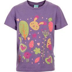 T-shirty chłopięce: Koszulka HAAS KIDS VIOLET 134