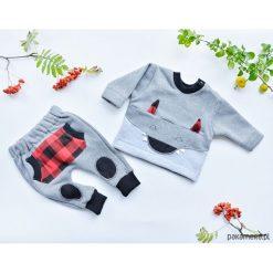 Spodnie dla dziecka Wilczek, dres. Czerwone spodnie chłopięce marki DOMYOS, z nadrukiem, z bawełny. Za 99,00 zł.
