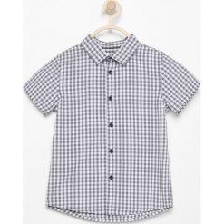 Koszule chłopięce z krótkim rękawem: Koszula z krótkim rękawem - Jasny szar