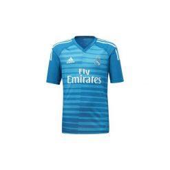 T-shirty chłopięce: T-shirty z krótkim rękawem Dziecko  adidas  Koszulka wyjazdowa bramkarza Real Madryt