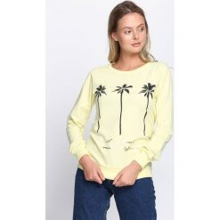 Jasnożółta Bluza Beach California. Żółte bluzy damskie Born2be, m. Za 34,99 zł.