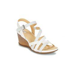 Sandały Geox  DOROTHA C. Białe sandały damskie marki Geox. Za 317,10 zł.