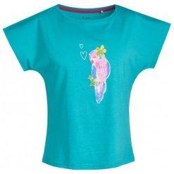 Bluzki, topy, tuniki: Bluzka z krótkim rękawem damska