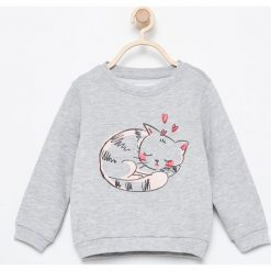 Bluza z kotkiem - Jasny szar. Szare bluzy niemowlęce marki Reserved. Za 19,99 zł.
