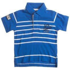 T-shirty chłopięce z krótkim rękawem: Koszulka polo w kolorze niebiesko-białym