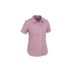 Koszule damskie: Koszule z krótkim rękawem Salewa  KOSZULA  SIRA DRY AM W S/S SRT 20910-0445