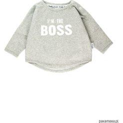 Bluza I'm the boss - szary. Czerwone bluzy dziewczęce rozpinane marki Pakamera, z dzianiny. Za 60,00 zł.