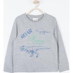 Koszulka. Szare t-shirty chłopięce z długim rękawem DINOSAUR, z aplikacjami, z bawełny. Za 45,90 zł.