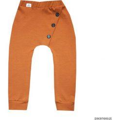 Spodnie dresowe brązowe 68-134 / BUGZY. Brązowe chinosy chłopięce Pakamera, z dresówki. Za 69,00 zł.