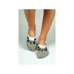 Skarpetki damskie: Skarpetki stopki z pandą
